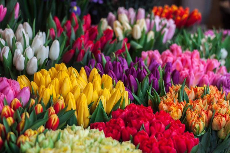 btw op bloemen tarief
